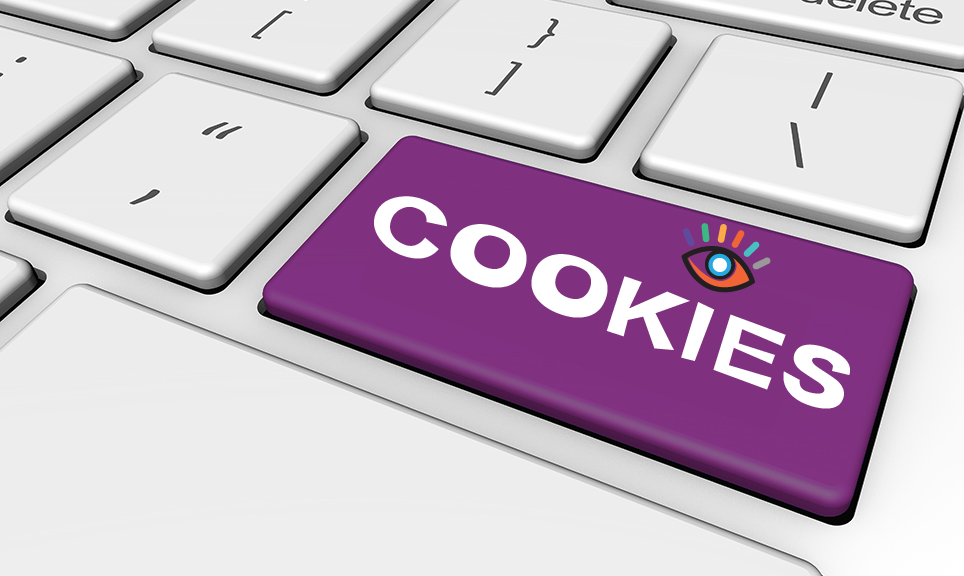 cookie policy Fanicweb